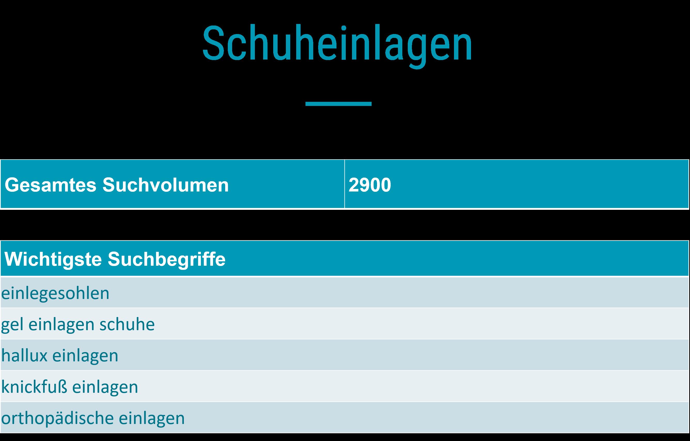 Suchanalyse_Schuheinlagen